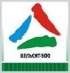 Цельсит-500 — термостойкая кремнийорганическая эмаль
